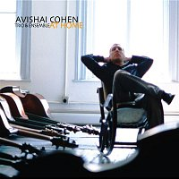 Avishai Cohen – At Home