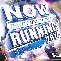 Různí interpreti – Now That's What I Call Running 2014