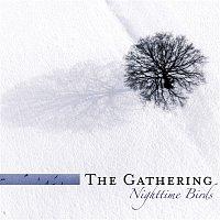 The Gathering – Nighttime Birds (Reissue)