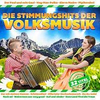 Různí interpreti – Die Stimmungshits der Volksmusik