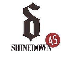 Shinedown – 45
