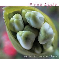 Fiona Apple – Parting Gift (Live Version)