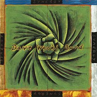 Dave Weckl Band – Synergy