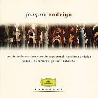 Různí interpreti – Rodrigo: Concierto de Aranjuez, Entre olivares etc. [2 CDs]