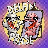 Adolfeen – Delfín, ale prase