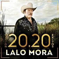 Přední strana obalu CD Visión 20.20 Éxitos