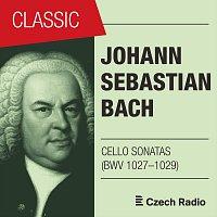 Petr Nouzovský, Monika Knoblochová – J. S. Bach: Cello Sonatas BWV 1027–1029