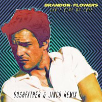 Brandon Flowers – Can't Deny My Love [Goshfather & Jinco Remix]