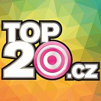 Top20.cz 2/2014