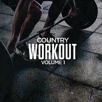 Různí interpreti – Country Workout, Volume 1