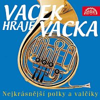 Vacek hraje Vacka