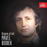 Pavel Bobek – Krajem já šel