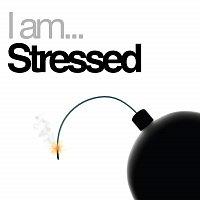 Různí interpreti – I Am Stressed
