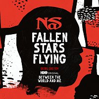 Nas – Fallen Stars Flying [Original Song From Between The World And Me]