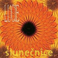 Lucie – Slunecnice