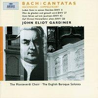 Přední strana obalu CD Bach: Ascension Cantatas BWV 11, 37, 43 & 128