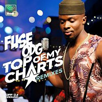 Fuse ODG – Top Of My Charts [Remixes]