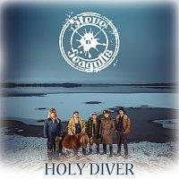 Steve 'n' Seagulls – Holy Diver