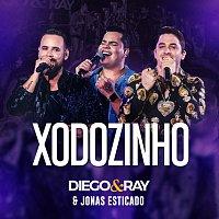 Diego & RAY, Jonas Esticado – Xodozinho [Ao Vivo]