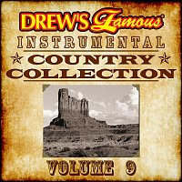 The Hit Crew – Drew's Famous Instrumental Country Collection, Vol. 9