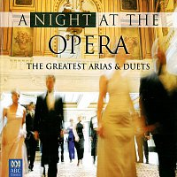 Různí interpreti – A Night At The Opera: The Greatest Arias And Duets