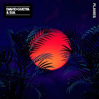 David Guetta, Sia – Flames