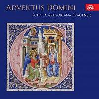 Schola Gregoriana Pragensis – Adventus Domini. Adventní mše Rorate v českých kancionálech 15.- 16. století