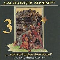 Různí interpreti – Salzburger Advent: ...und sie folgten dem Stern! Folge 3