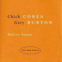 Přední strana obalu CD Native Sense: The New Duets