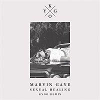 Přední strana obalu CD Sexual Healing