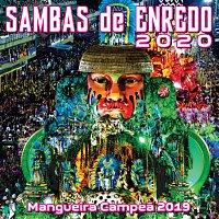 Různí interpreti – Sambas De Enredo Das Escolas De Samba 2020