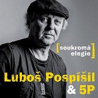 Luboš Pospíšil, 5P – Soukromá elegie