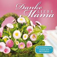 Přední strana obalu CD Danke liebe Mama - Die 18 schonsten Lieder zum Muttertag