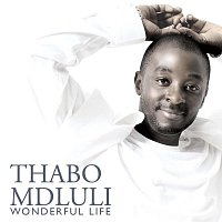 Thabo Mdluli – Wonderful Life