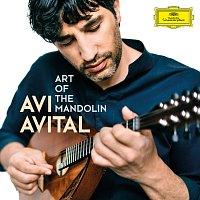 Avi Avital, Yizhar Karshon, Ophira Zakai, Patric Zepec – Scarlatti: Sonata in D Minor, Kk. 89: III. Allegro (Arr. for Mandolin and Basso continuo)