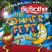 Přední strana obalu CD Big Brother Allstars - Die Sommerfete