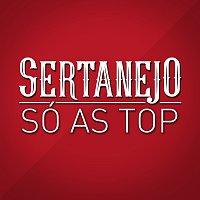 Různí interpreti – Sertanejo Só As Top