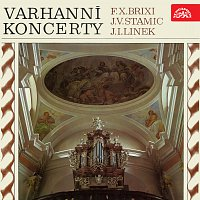 Různí interpreti – Koncerty pro varhany a orchestr