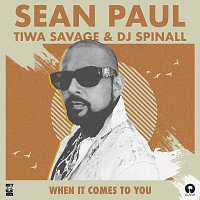Sean Paul, Tiwa Savage – When It Comes To You [DJ Spinall Remix]