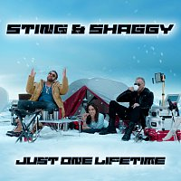 Sting, Shaggy – Just One Lifetime