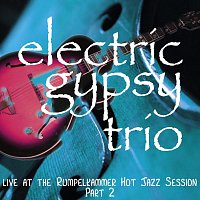 Electric Gypsy Trio (Kalu, Moro, Steven Saskavanian) – Live at the Rumpelkammer Hot Jazz Session Part 2