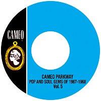 Různí interpreti – Cameo Parkway Pop And Soul Gems Of 1967-1968 Vol.5