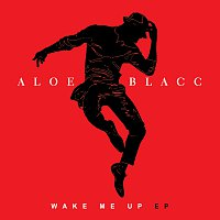 Aloe Blacc – Wake Me Up
