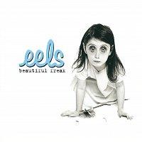 Eels – Beautiful Freak