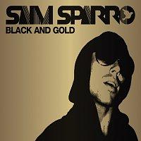 Přední strana obalu CD Black & Gold [Remix EP]