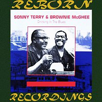 Sonny Terry, Brownie McGhee – Drinking In The Blues (HD Remastered)