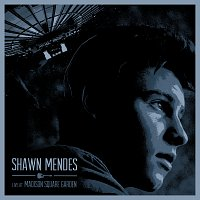 Shawn Mendes – Live At Madison Square Garden
