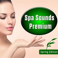 Flygon – Spa Sounds Premium - Spring Edition