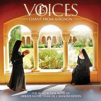 Přední strana obalu CD Voices: Chant From Avignon