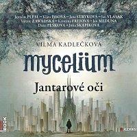 Jaroslav Plesl, Jana Stryková, Klára Issová – Mycelium - Jantarové oči (MP3-CD)